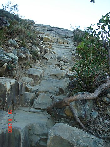 The path up