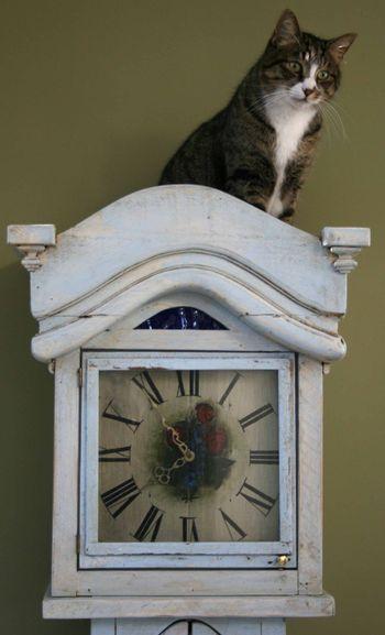 Fatcat clock1