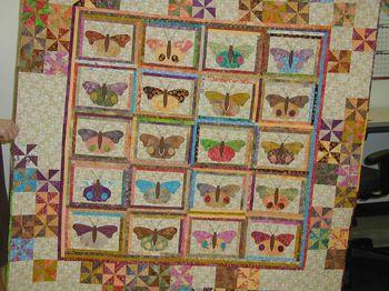 Mindys butterflies