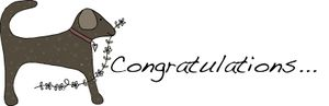 Congratulation dog