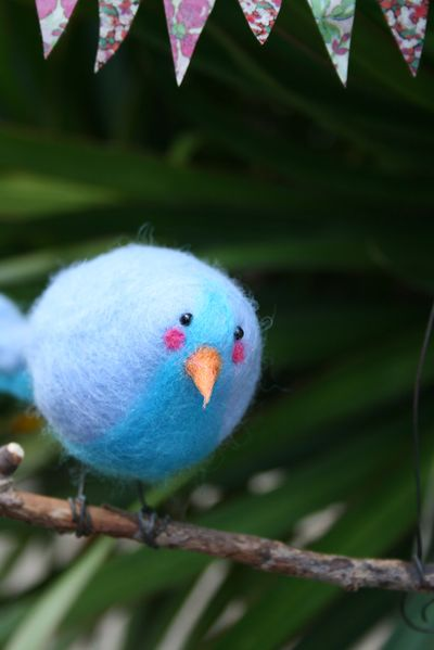 Blue wool bird