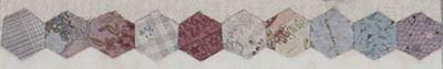 10 hexagons 1