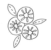 Fernhill yoyo flower