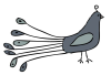Peacock-01